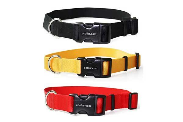 Durable-Quick-Snap-Nylon-Collar