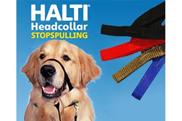 Halti_collage_full