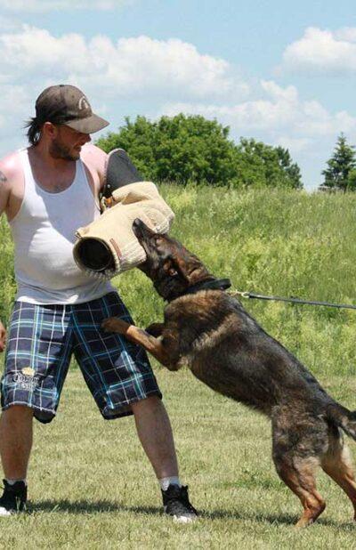 protection-training-1